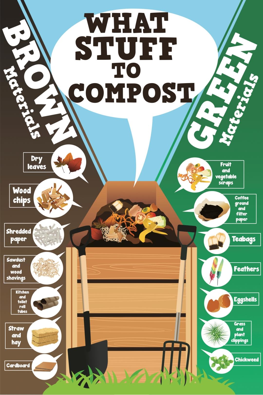 Compost inforgraphic
